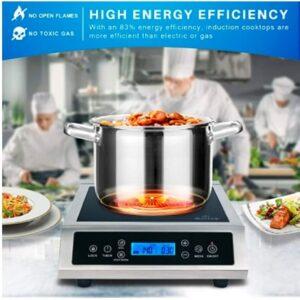 Duxtop Professional Portable Induction Cooktop (1800 Watts) P961LS/BT-C35-D